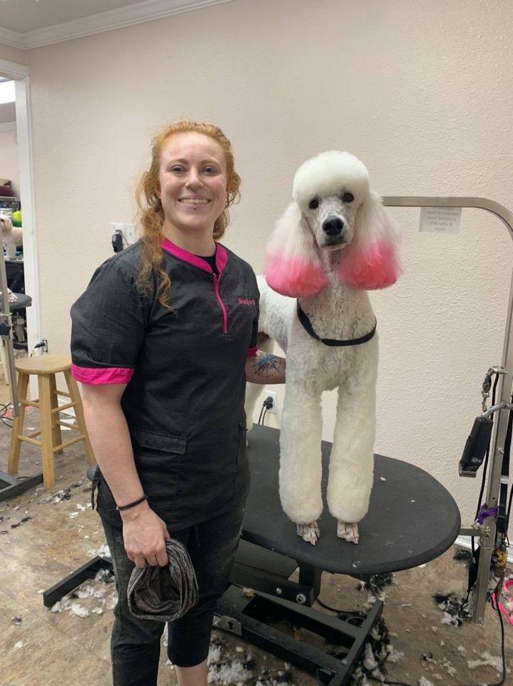 ShamPoochies pet groomer Courtney